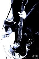 Антишит 2009