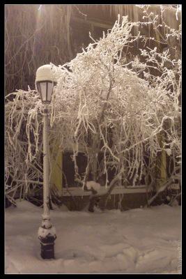 Питер. 10 января 2010. Иней ночью