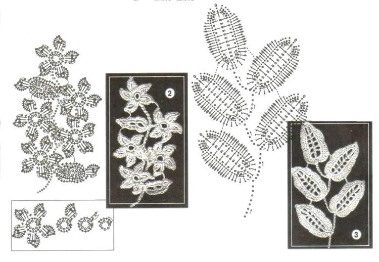 Садовый цветок портулак фото