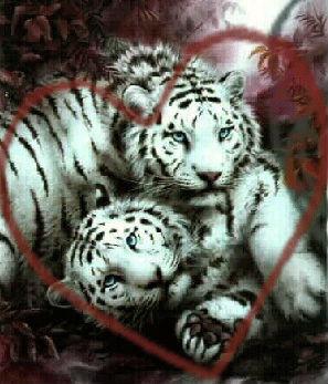 """Схема вышивки  """"Белый тигр """" - Схемы автора  """"klysha """" - Вышивка крестом."""